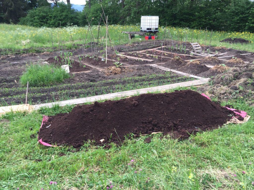 Unser Garten Anfang Mai